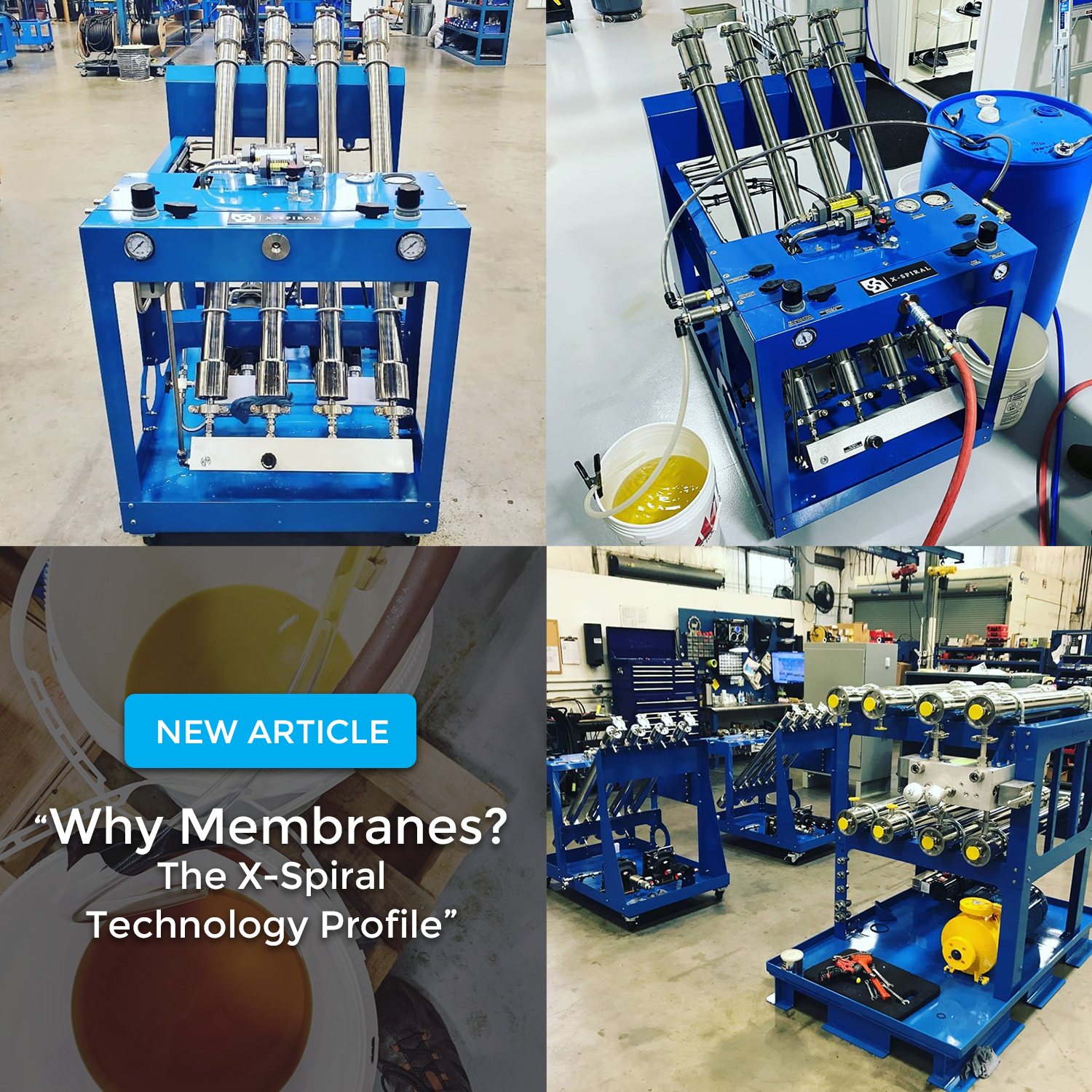 whymembranes